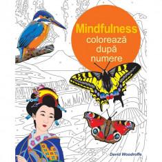 Mindfulnes. Coloreaza dupa Numere (Carte de colorat pentru adulti) - David Woodroffe