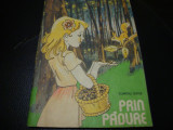 Dumitru Ristea - Prin padure - carte de colorat- 1989