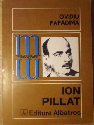ION PILLAT - OVIDIU PAPADIMA foto