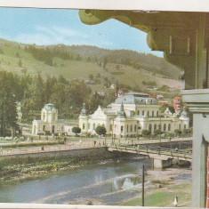 Bnk cp Vatra Dornei - Vedere - circulata, Printata