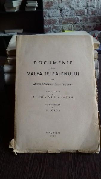 DOCUMENTE DE PE VALEA TELEAJENULUI - ELEONORA ALEXIU