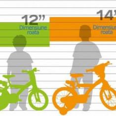 Bicicleta copii 14 Frozen Dino Bikes