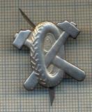 Y 1725 INSIGNA - MILITARA -SEMN DE ARMA - AUTO -PENTRU COLECTIONARI