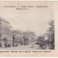 # Z.2271- Ro, Fogaras salut. carte postala nediviz. necirc: Str. Bethlen, animat, Necirculata, Fotografie, Fagaras