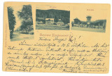 4997 - COVASNA, Litho, Romania - old postcard - used - 1900
