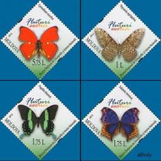 MOLDOVA 2013, Fauna - Fluturi, MNH