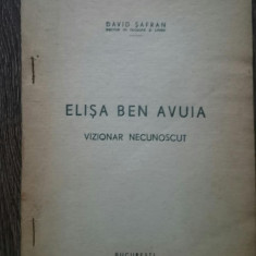 David Safran Elisa Ben Avuia Vizionar necunoscut