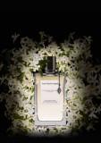 Van Cleef & Arpels Collection Extraordinaire California Reverie EDP 75ml pentru Femei, Apa de parfum, 75 ml