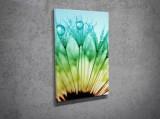 Tablou decorativ pe panza Majestic, 257MJS1231, Multicolor