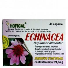 Echinaceea 30 mg 40 capsule - Hofigal