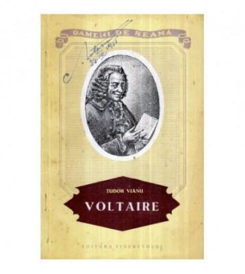 Voltaire foto
