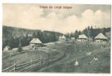 SV * Vedere (parțială) din CRINTII SALISTEI  * 1929  *  COPII JUCANDU-SE, Circulata, Fotografie, Printata, Saliste