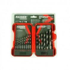 Set 15 burghie pentru lemn, Raider 3-10mm