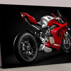 Tablou Canvas Motocicleta Ducati