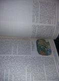 carte veche Povesti copii,HEIDI,FETITA MUNTILOR,1987,JOHANNA SPYRI,T.GRATUIT
