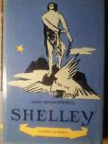 SHELLEY-DAN GRIGORESCU