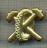 Y 1730 INSIGNA - MILITARA -SEMN DE ARMA - AUTO -PENTRU COLECTIONARI