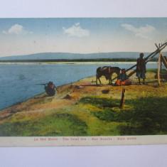 Palestina-La marea Moarta,carte postala necirculata cca 1918