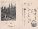 Stulpicani (Bucovina ,Suceava )- clasica, editura Leon Konig ,rara