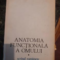 Anatomia functionala a omului – Raoul Robacki