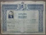 Diploma Bacalaureat/ Carei, 1937