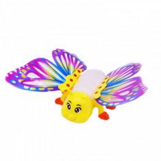Fluture cu luminite si muzica
