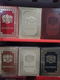 Liturghier în piele, Molitfelnic, Mineiul, Octoih Mare, Biblia vecernier