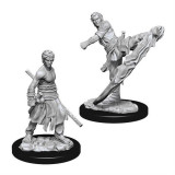 Set Figurine Dungeons And Dragons Nolzur S Unpainted Male Half Elf Monk