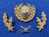 Insigna Militara Ofiter TRANSMISIUNI - Coifura insemn cascheta SEMN DE ARMA RSR