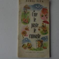 Cine le paste le cunoaste-Aurel Tita