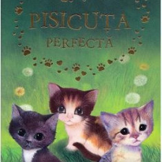 Pisicuta perfecta - Holly Webb