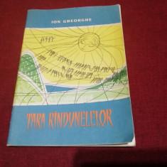 ION GHEORGHE TARA RANDUNELELOR