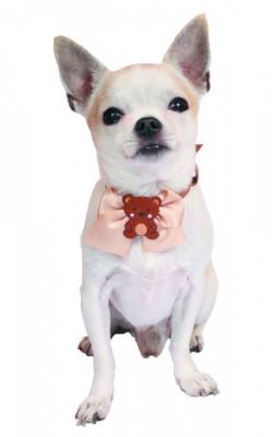 Zgarda Teddy - decor ursulet - F1205 (Culoare: Roz) foto