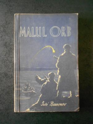 IURI BESSONOV - MALUL ORB foto