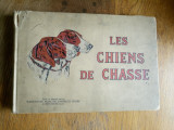 VANATOARE, VANAT,VANATORI -CAINII DE VANATOARE = Les Chiens De Chasse - 1931