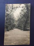 Turda Parc