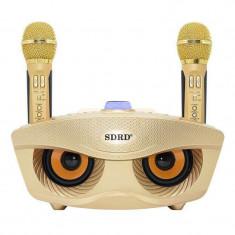 Sistem wireless cu boxa si 2 microfoane pentru karaoke