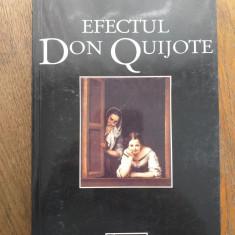 EFECTUL DON QUIJOTE- VICTOR IERONIM STOICHITA, ED.HUMANTIAS, 1995