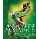 Cumpara ieftin Animale. Marea enciclopedie. Ghid ilustrat complet. Reeditare/***