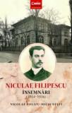 Niculae Filipescu. Insemnari (1914-1916)/Nicolae Polizu-Micsunesti, Corint