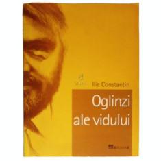 Oglinzi ale vidului - Ilie Constantin