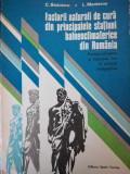 FACTORII NATURALI DE CURA DIN PRINCIPALELE STAȚIUNI BALNEOCLIMATERICE DIN RO.