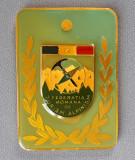 Placheta Federatia romana de turism alpinism - medalie