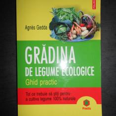 AGNES GEDDA - GRADINA DE LEGUME ECOLOGICE. GHID PRACTIC