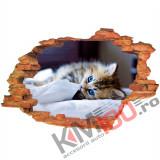 "Sticker ""Wall Crack"" Cat 1 - 120 x 80 cm"