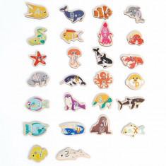 Joc magnetic de pescuit 30 piese Topbright, 26 piese, 2 ani+