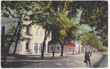 #2357 Romania, Lacul Sarat, Braila carte postala necirculata: Aleia principala