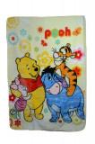 Paturica groasa Disney Winnie The Poof WTP02 100X140, Multicolor
