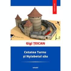 carte pdf | Cetatea Turnu și Nyiabetul său - Gigi Țeican  | Ebook