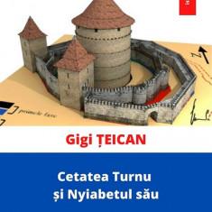 carte pdf   Cetatea Turnu și Nyiabetul său - Gigi Țeican    Ebook